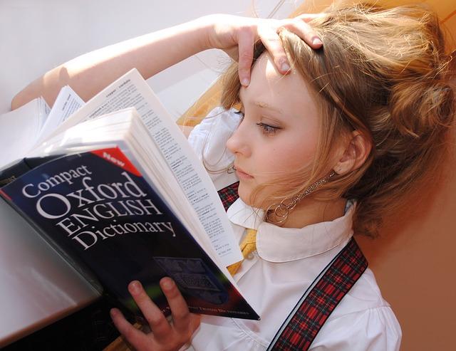 učení se slovníkem